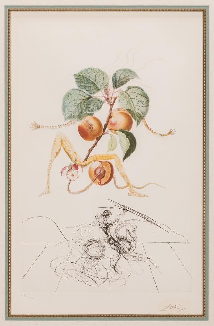 Salvador Dali Apricot Chevalier Litho