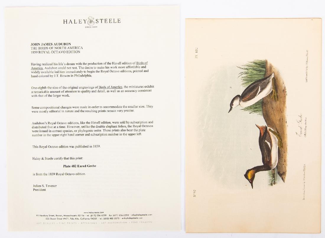 4 Audubon Royal Octavo Prints, 1859 - 7