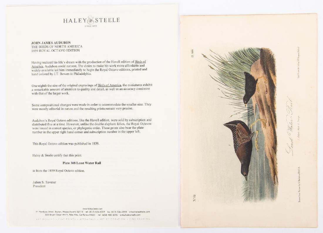 4 Audubon Royal Octavo Prints, 1859 - 8