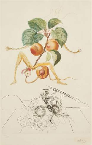 Salvador Dali Abricot Chevalier Lithograph