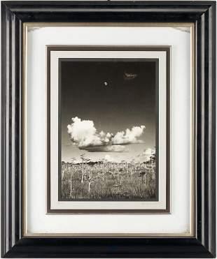 Clyde Butcher Photograph, Moonrise Everglades