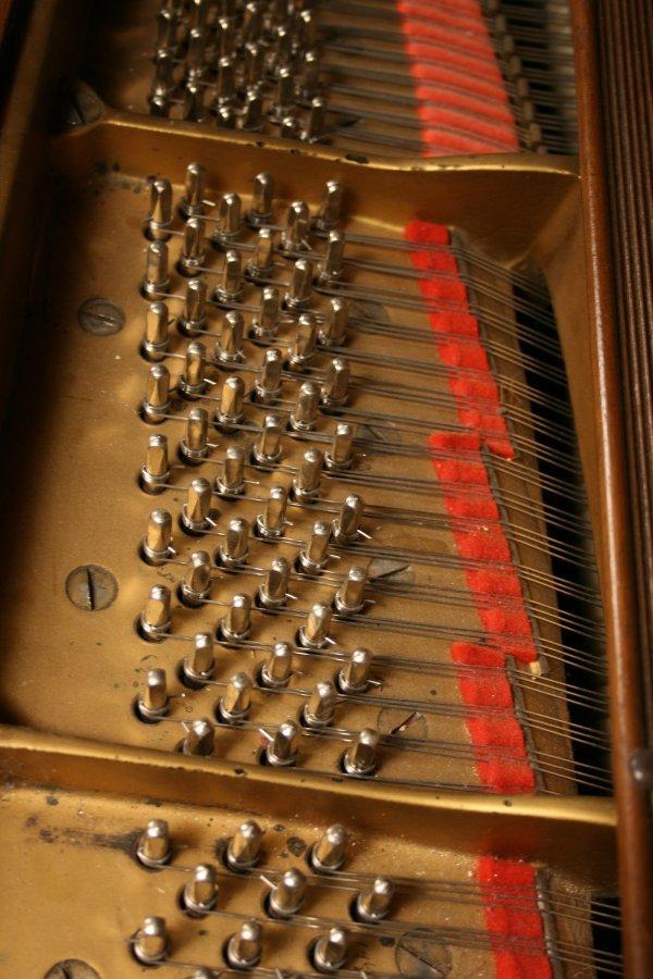 102: 1925 Steinway Baby Grand Piano, Model M - 7