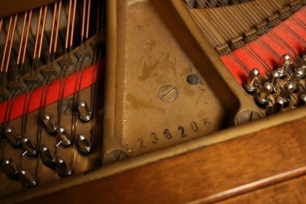 102: 1925 Steinway Baby Grand Piano, Model M - 9