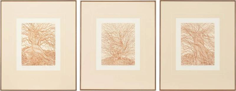 3 Guillaume Azoulay Tree Etchings, The Willow Suite