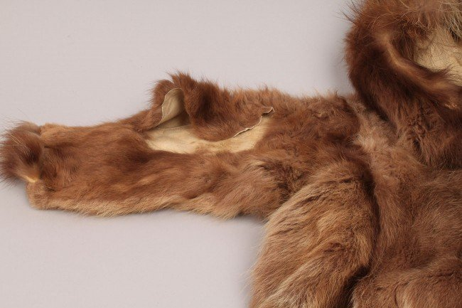 569: Lot of Inuit and Plains Indian Clothing - 6