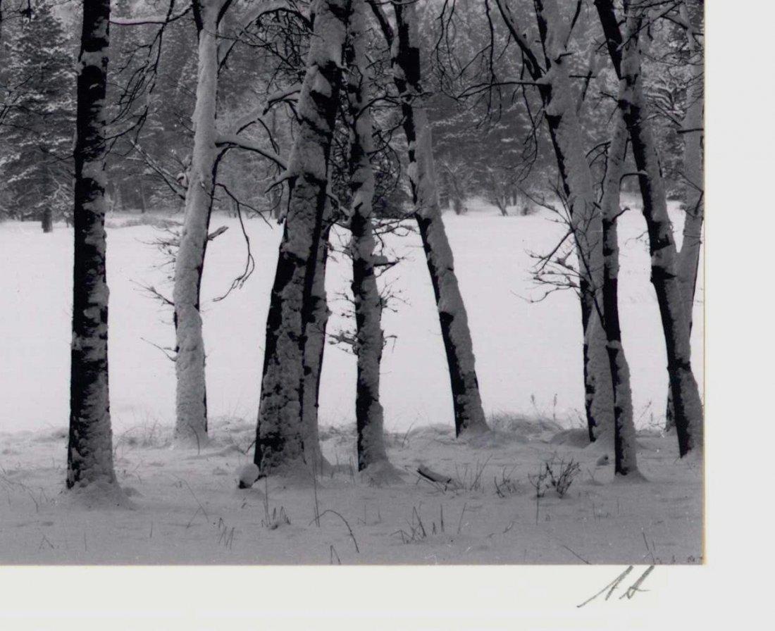 158: Ansel Adams 18 Folio Special Ed., Yosemite - 10