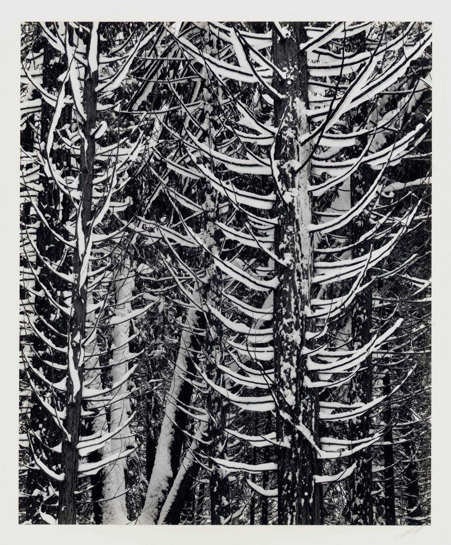 158: Ansel Adams 18 Folio Special Ed., Yosemite - 5