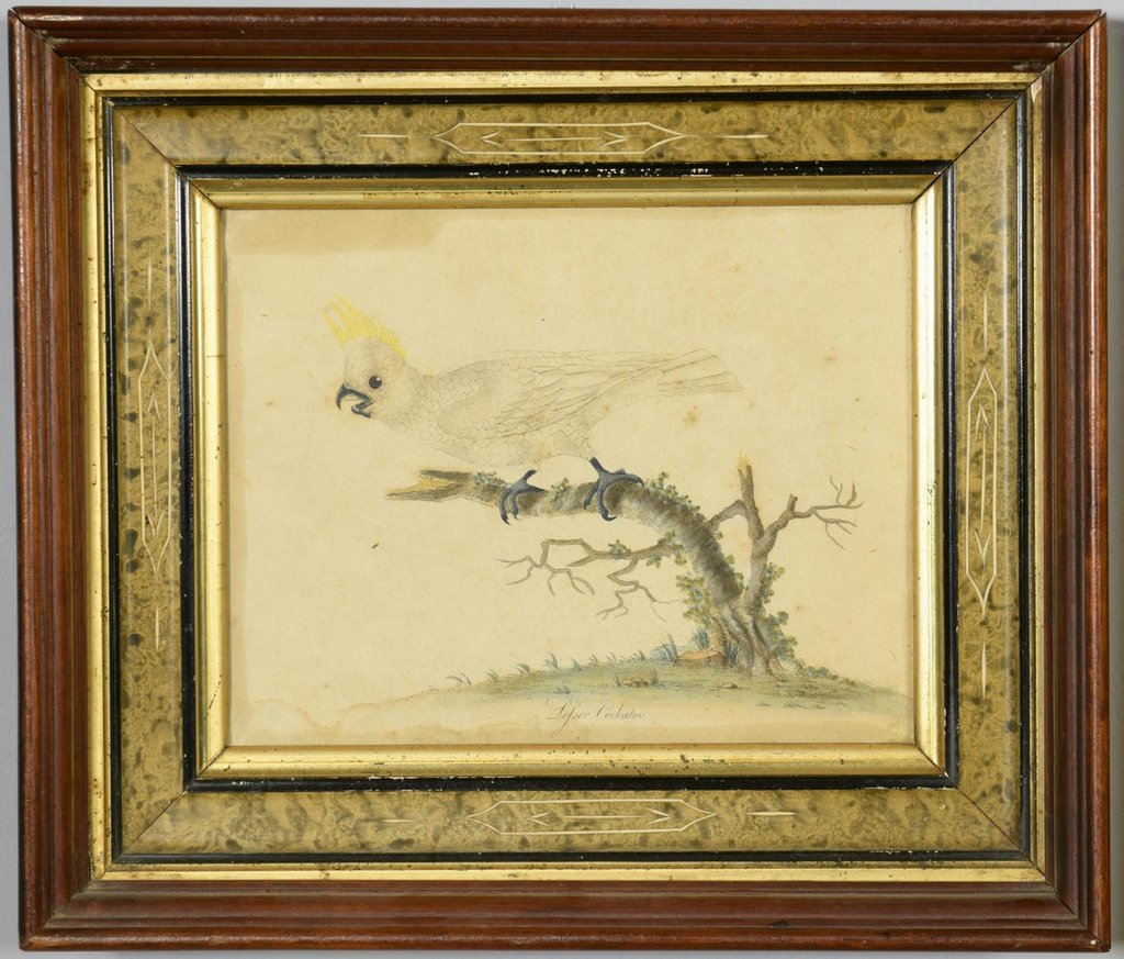 2 Art Images of Birds, O/C and Engraving - 6