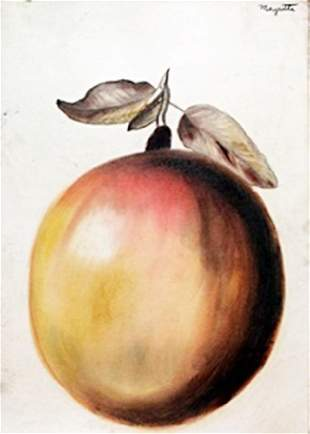 The Apple Pastel Drawing on Paper Rene Magritte