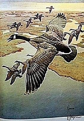 "LITHOGRAPH ""THE CANADA GOOSE""     ARTIST FRANCIS LEE"