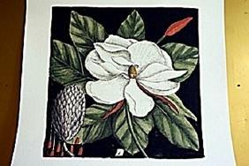 Magnolia- Botanical Lithograph