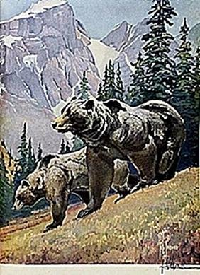 "LITHOGRAPH  ""THE GRIZZLY BEAR""     ARTIST FRANCIS LEE"
