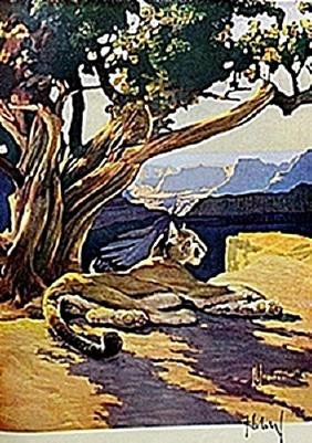 """LITHOGRAPH """"THE MOUNTAIN LION""""     ARTIST FRANCIS LEE"""