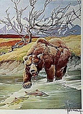 "LITHOGRAPH ""THE ALASKA BROWN BEAR""     ARTIST FRANCIS"