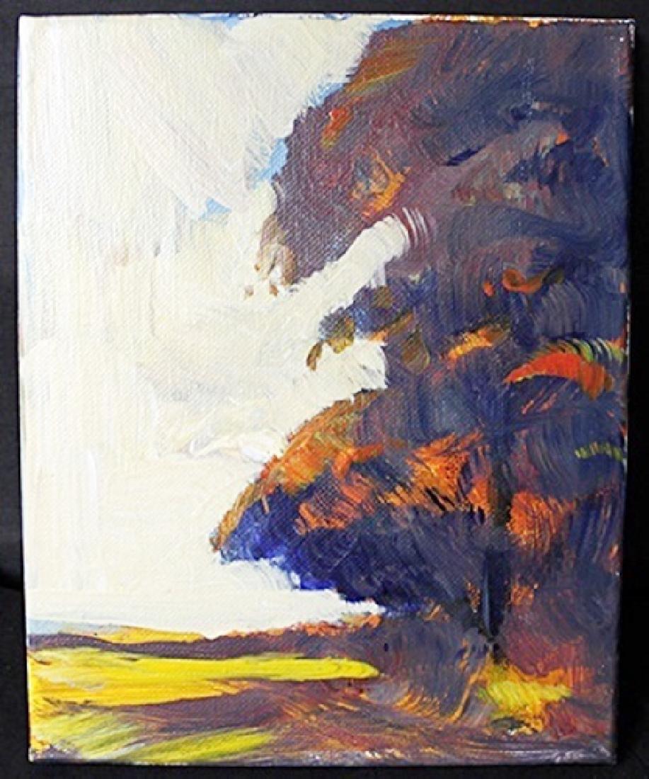 """Casting Shadows"" By Michael Schofield (118EF)"