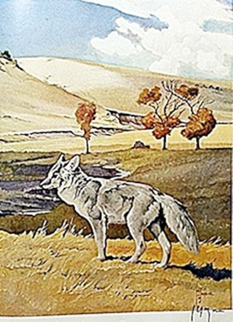 """LITHOGRAPH """"THE COYOTE""""     ARTIST FRANCIS LEE JAQUES"""