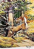 """LITHOGRAPH """"THE WHITE-TAIL DEER""""     ARTIST FRANCIS LEE"""