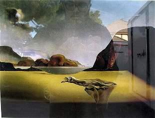 The Transparent Simulacrum of the Feigned Image Dali