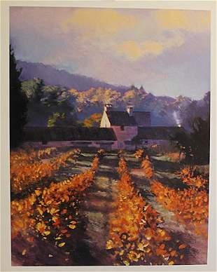 Provence Fields By John Harris