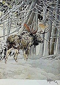 "Lithograph ""the Moose"" By Artist Francis Lee Jaques"