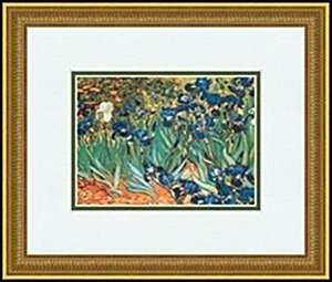 IRIS GARDEN after    VINCENT VAN GOGH