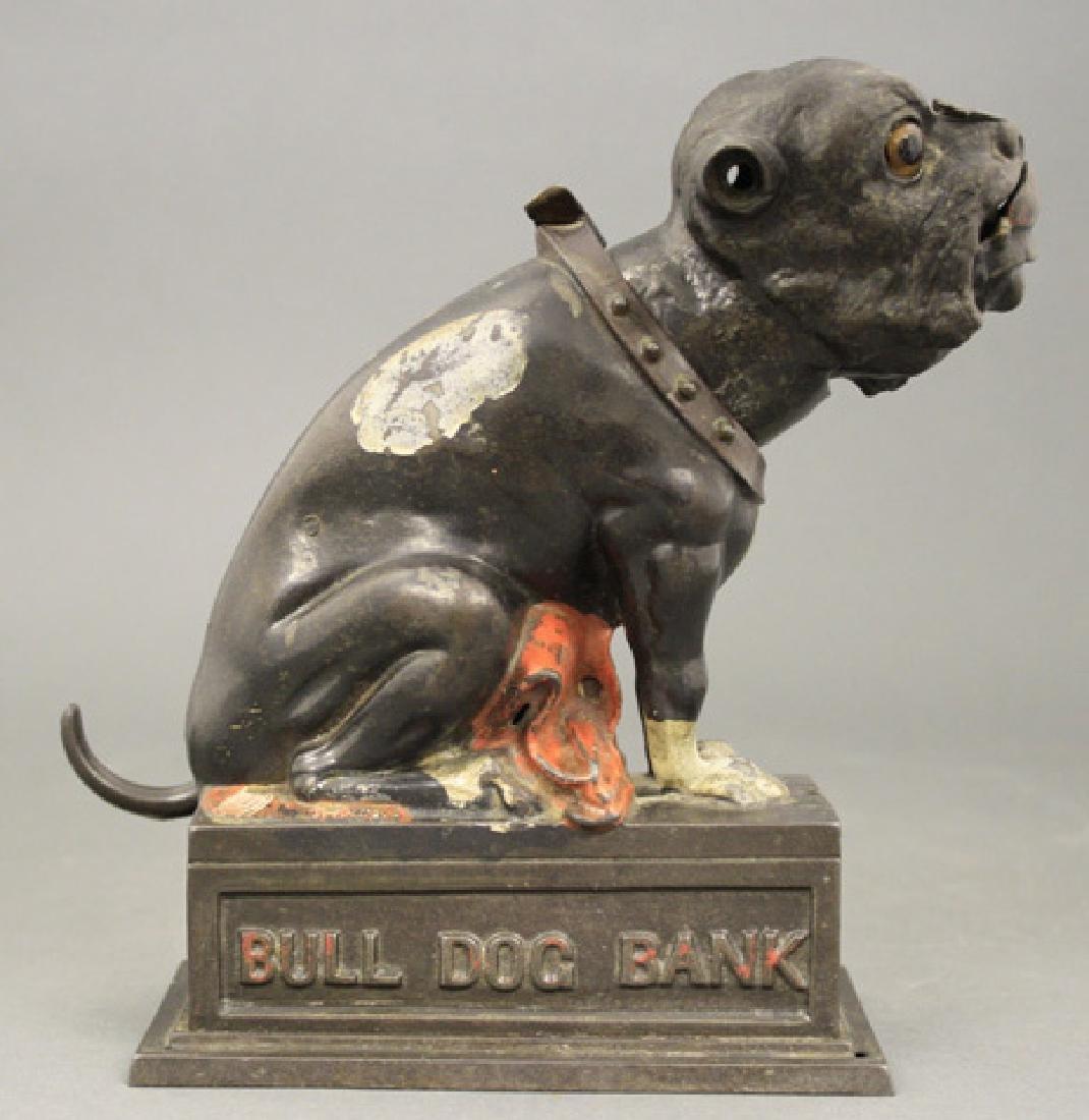 Bull Dog Bank - Red Blanket