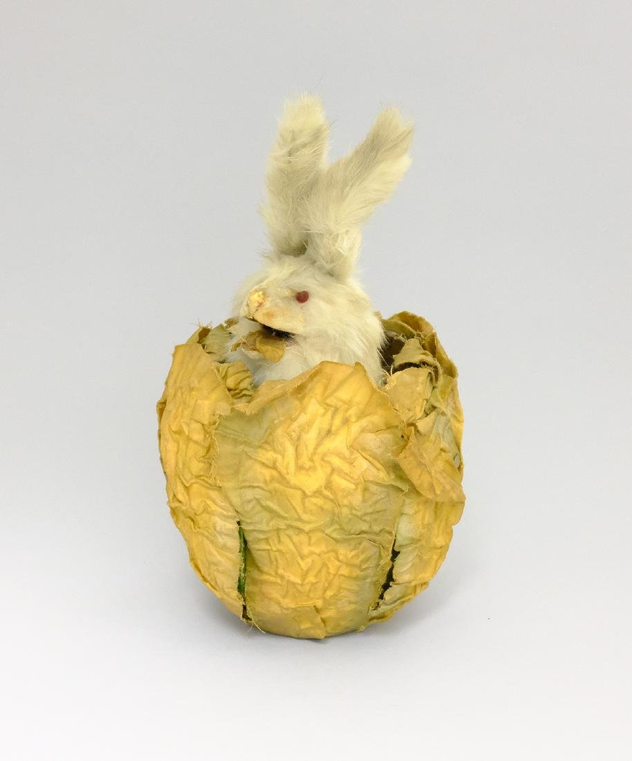 Rabbit in Cabbage