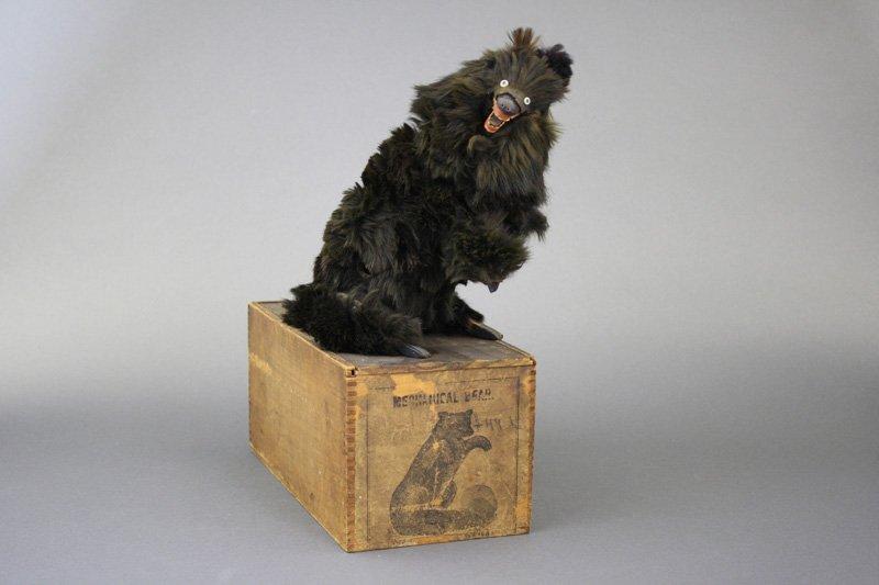 Clockwork Black Bear with Wooden Box