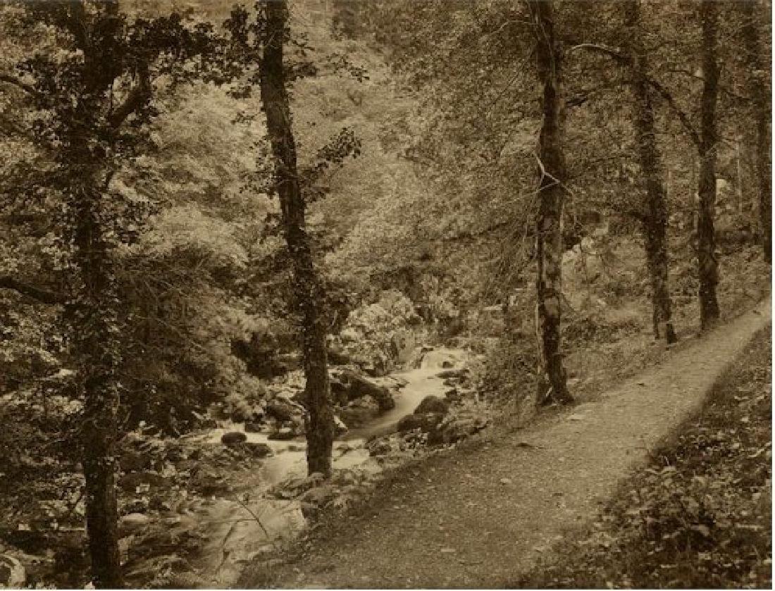 Torrent Walk, Dolgelly, Wales. C1870
