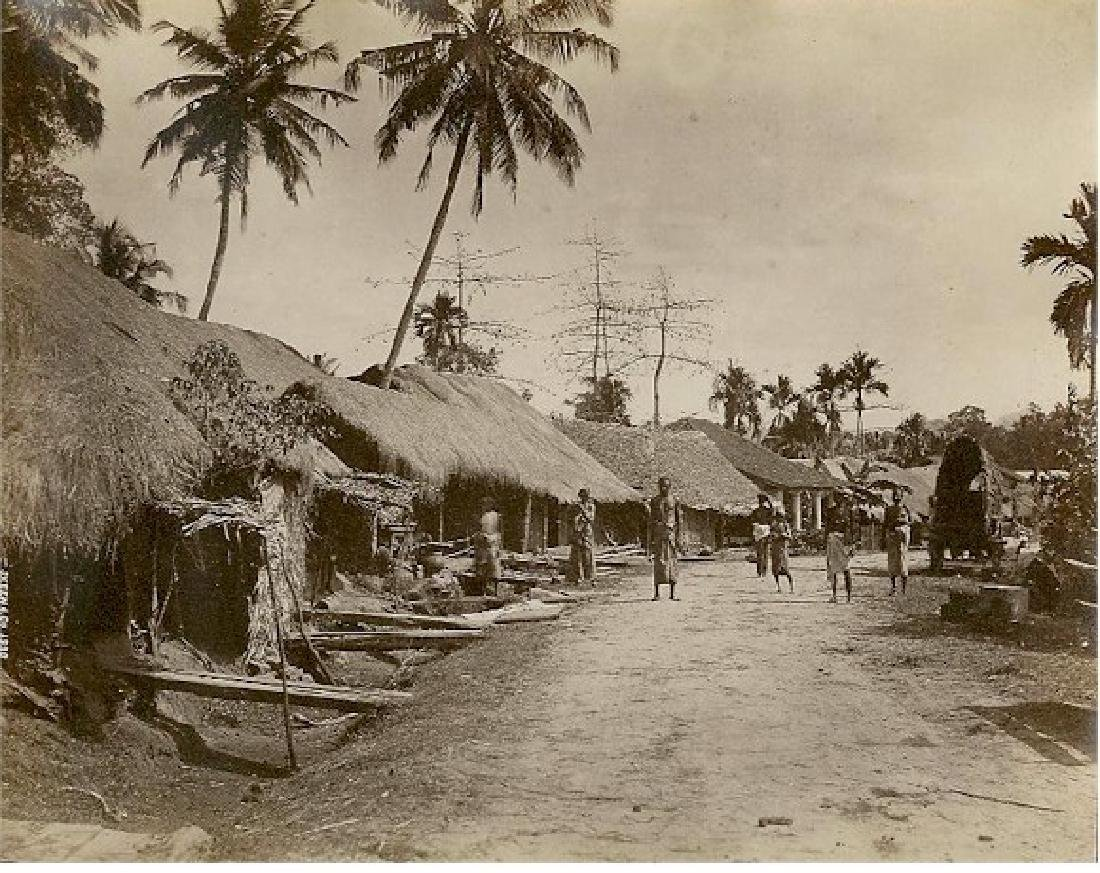 Village on the way to Anuradhapura, Ceylon. C1875