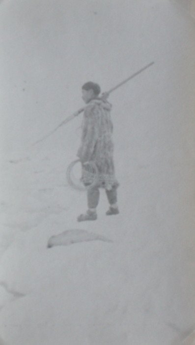 Eskimo Harpooning Seal. C1925
