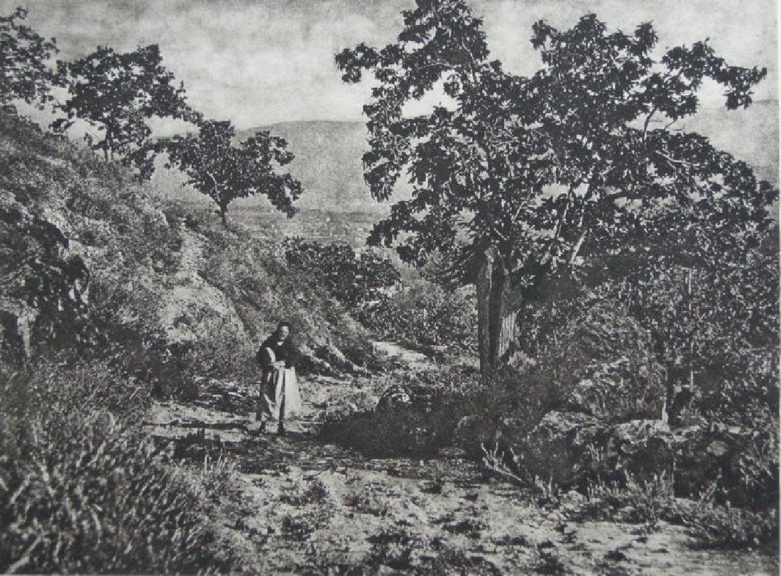 Dans la Montagne Noire by Comte de Dalmas