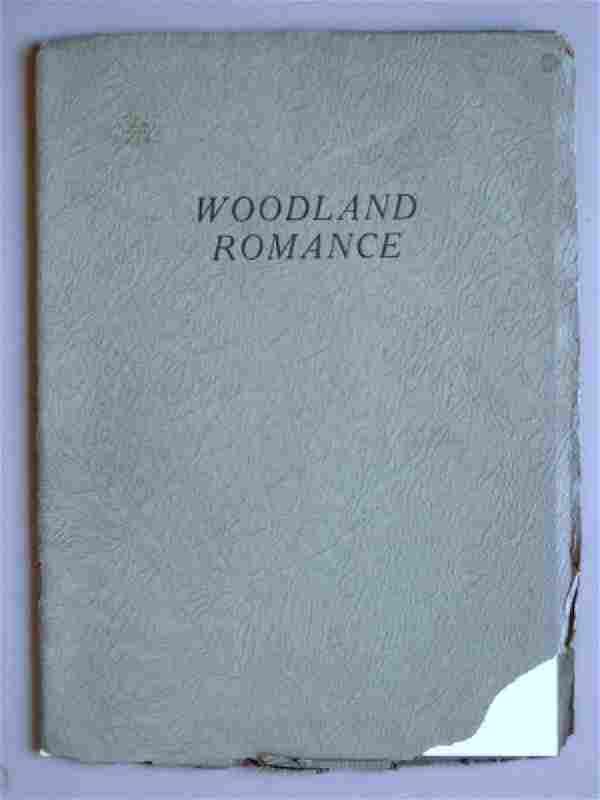 Woodland Romance by Arundel Holmes Nicholls. C1923