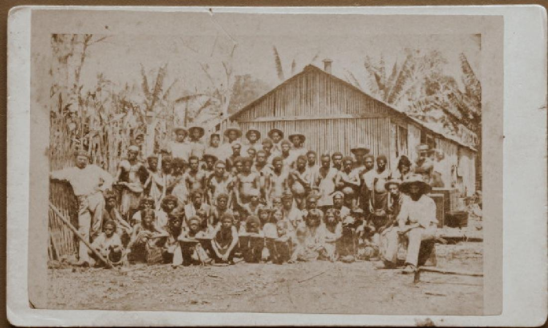 Native Workers on a Plantation