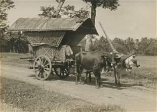 Javanese Cart near BoroBudui c1925
