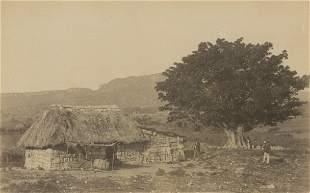 Native Hut Cuba c1880