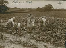 Set of 4 Strawberry Pickers. c1920