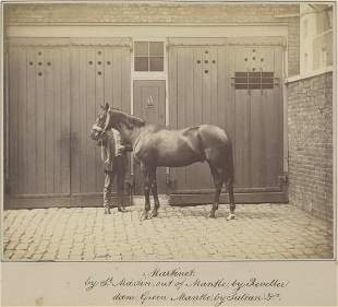Martinet by St Martin out of Mantle C1865