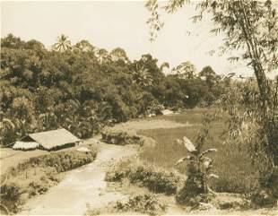 Buiteneorg, Java. c1925
