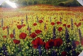 "Giclee on Canvas ""Spring Season"""