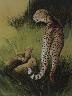 "Lithograph ""Cheetah Family"" after Caroline Schultz"