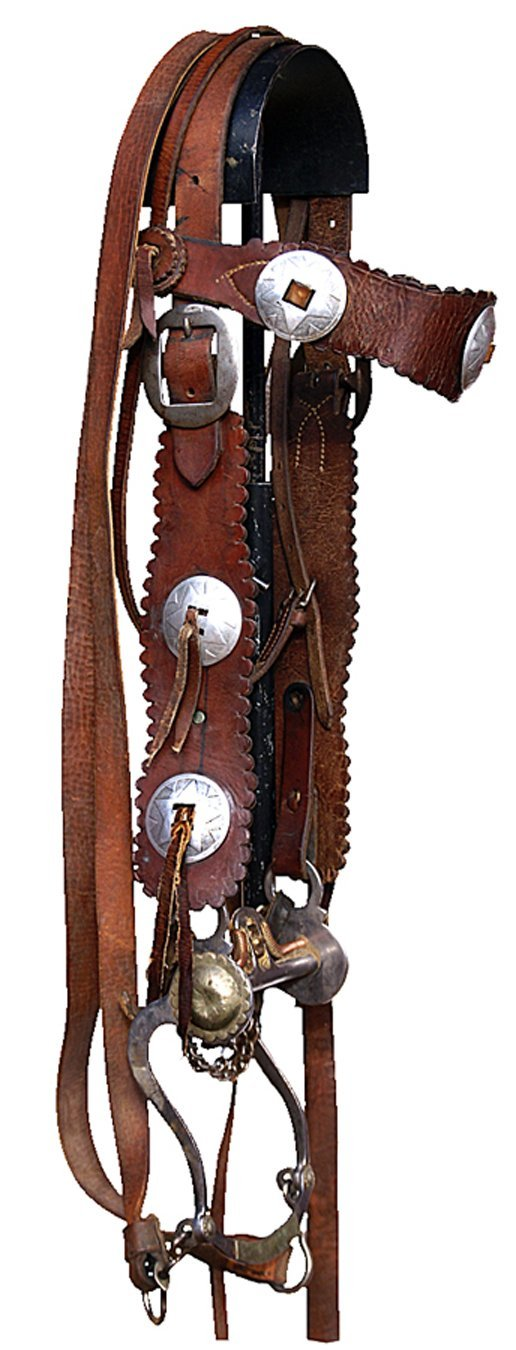 35: Scallop and concho bridle with Crockett Renalde bit