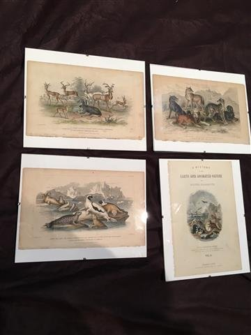 4 Plates from Oliver Goldsmith's book Earth & animated