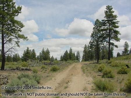 3: 4.67 Acres Klamath Oregon Sprague River KFE