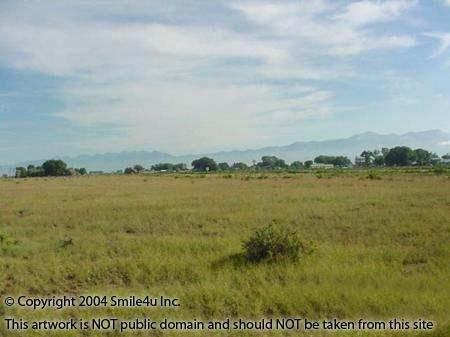 6: 37 Acres Saguache County Colorado Ewing Ranch