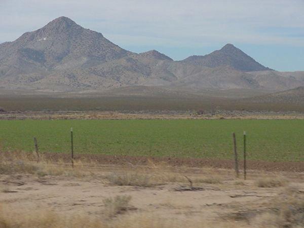 24: Big 80 Acres Deming Columbus Luna County New Mexico