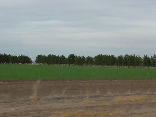 25: Big 80 Acres Deming Columbus Luna County New Mexico