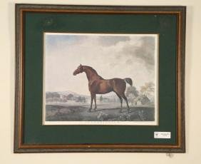 """""""SWEET WILLIAM"""" HORSE PRINT, FRAMED & MATTED"""