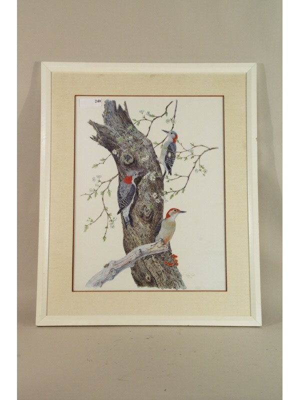 240: Red headed Woodpecker print signed by Robin Hill