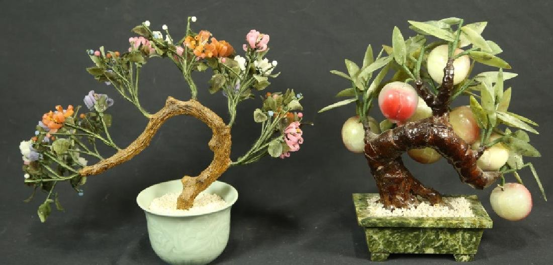 LOT OF TWO JADE TREES - 2